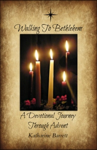 walking book cover 3