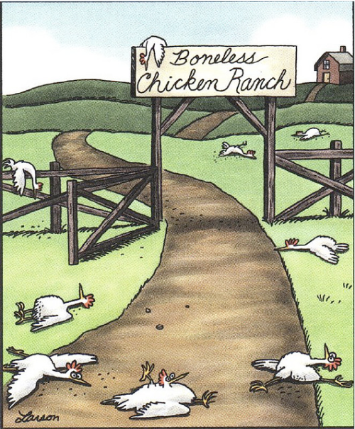boneless-chicken-ranch-far-side-247x300