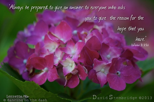 Reason for the Hope