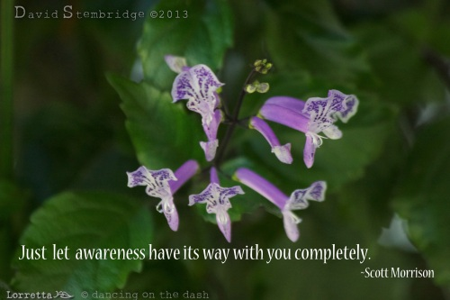 Complete Awareness